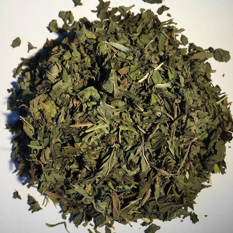 organic moroccan mint.jpg