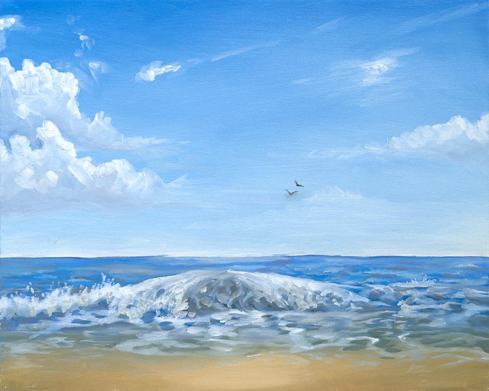 Slakey seascape birds med res.jpg
