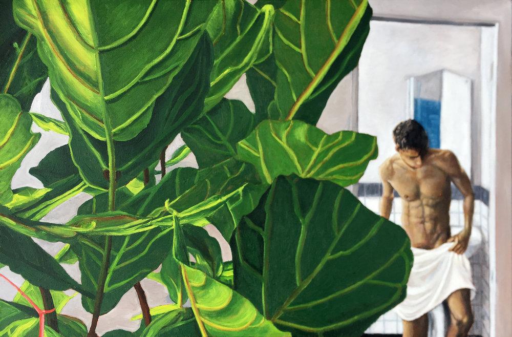 Ficus 2019