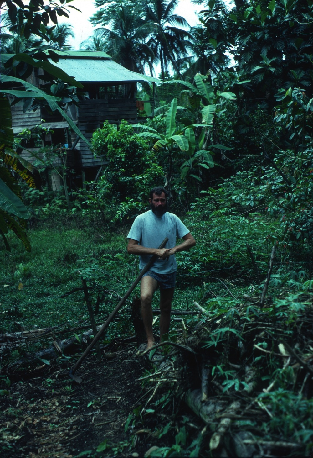 DM_001_009    Mel at his house    Cocles    11/1/1980    Mel in his garden   Photographer: Dan Miller