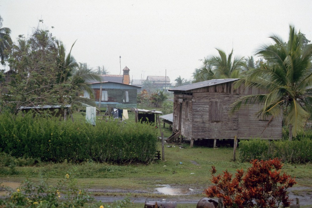 Casa Mr. Patterson    Puerto Viejo    1986    Vista desde el primer piso     CZ_001_011