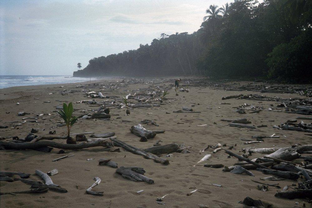 Playa queda más ancho después del terremoto