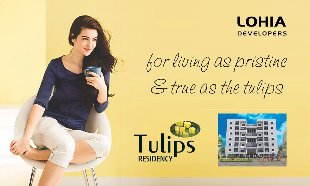 Real Estate Brochure for Lohia Builders     Click here for more...