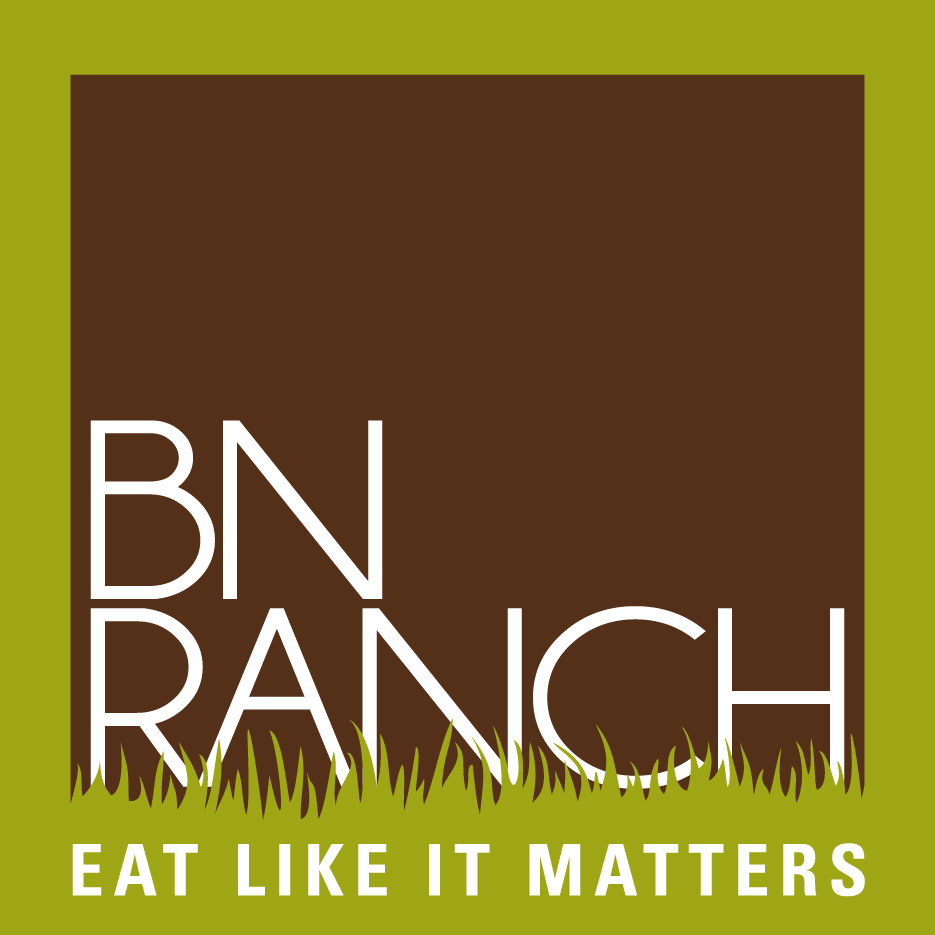BN Ranch final logo cmyk.jpg