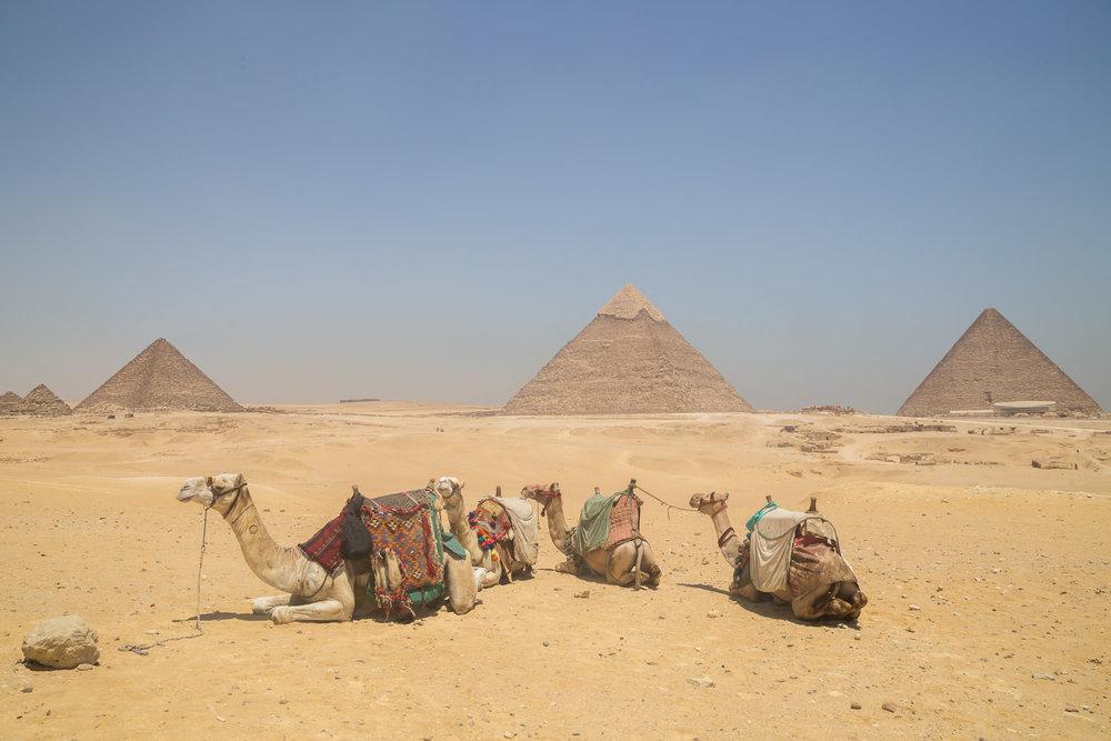 Giza at Last