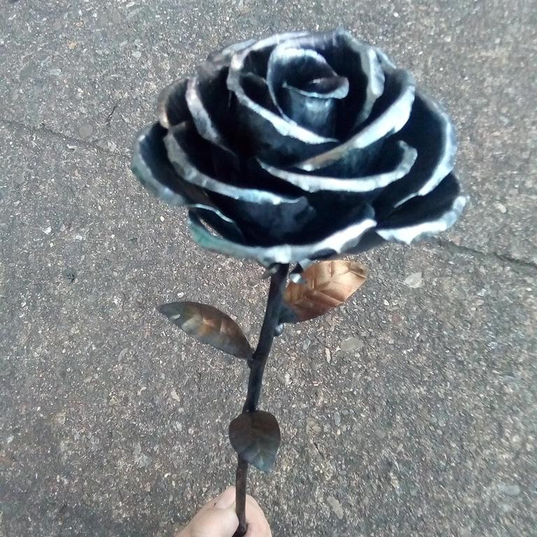 rosas1.jpg