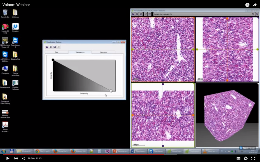 This webinar will show you how Voloom allows you to perform 3D histology reconstruction of serial sections (bright field and fluorescence), navigation through 3D histology data sets, tumor volume quantification, and 3D visualization.