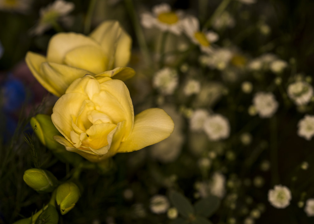 Florist12.jpg