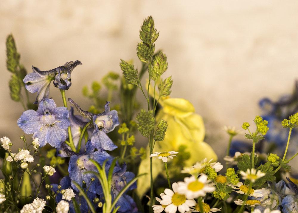 Florist13.jpg