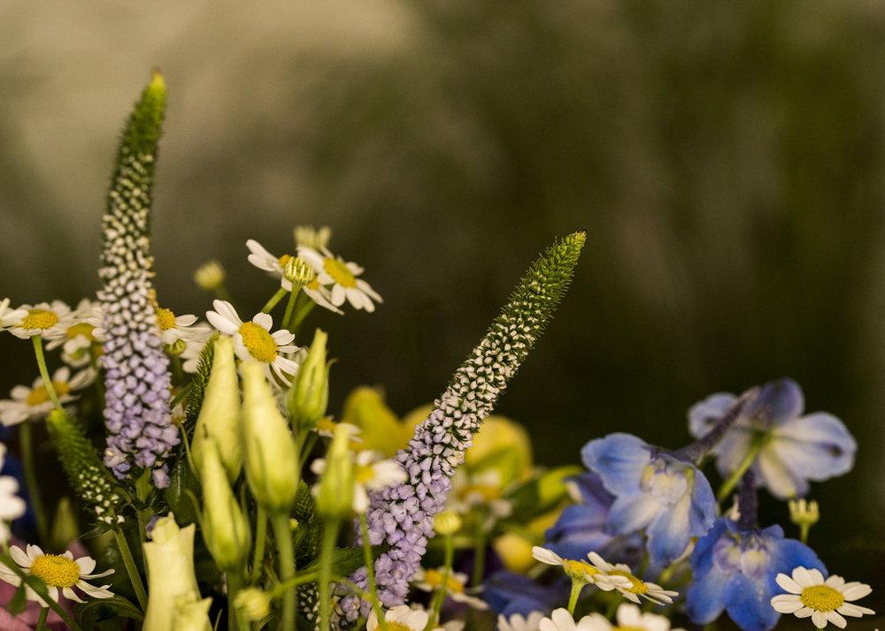 Florist15.jpg