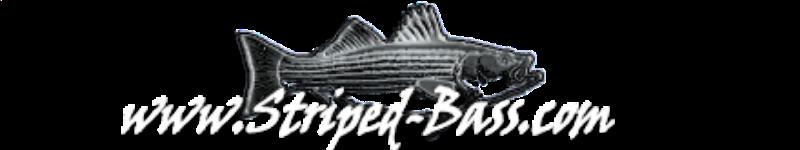 SBdotcom-logo.png