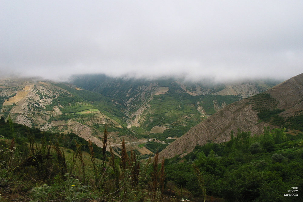 Heights of the Dalkhani Jungle | Mazandaran Province, Northern Iran