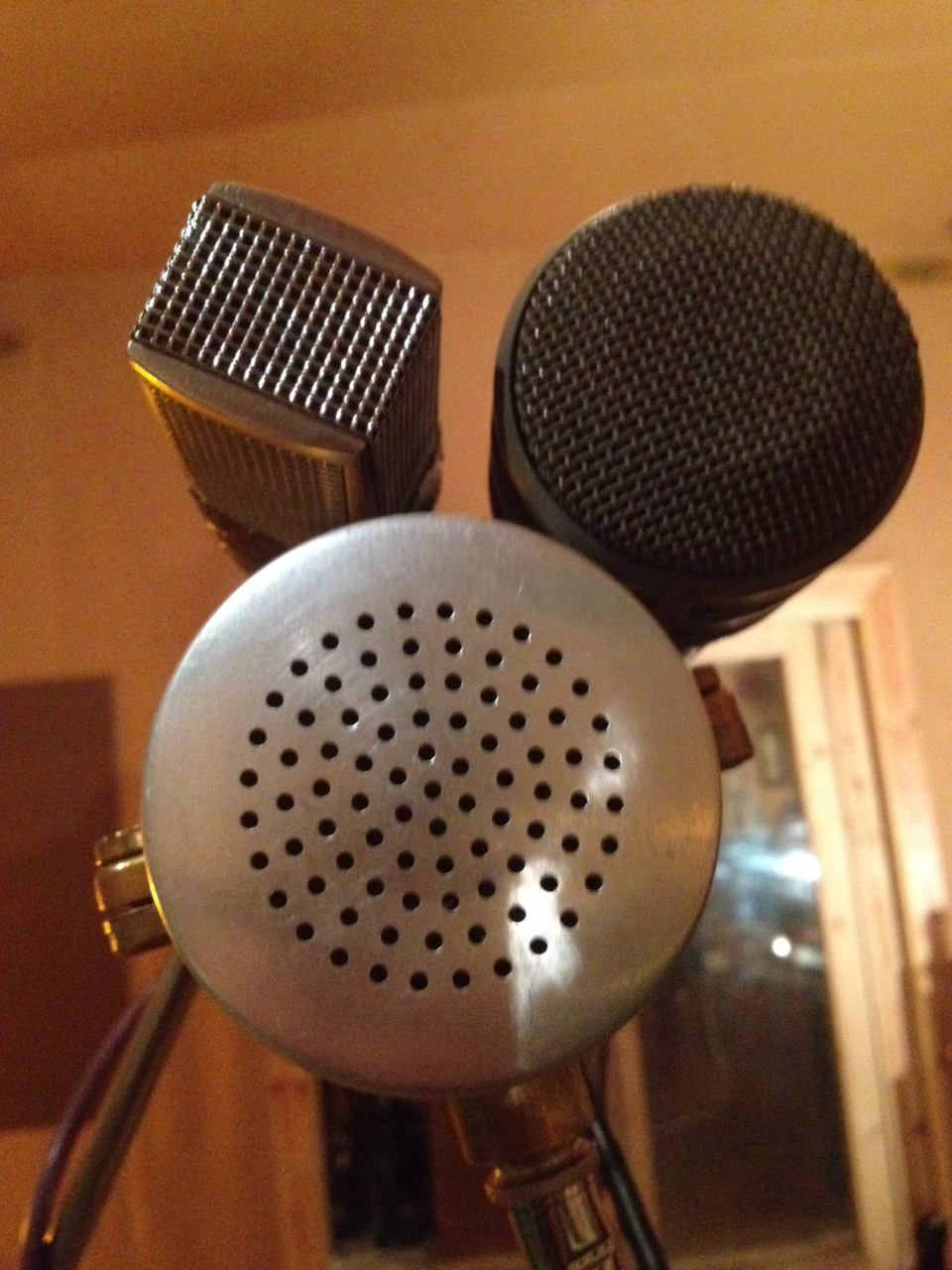 Sennheiser 441 + Electrovox re20 + wasaphone = killer 50s vocal sound for the treetop flyers