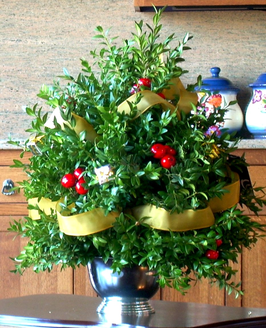 large boxwood arrangement in silver plastic container