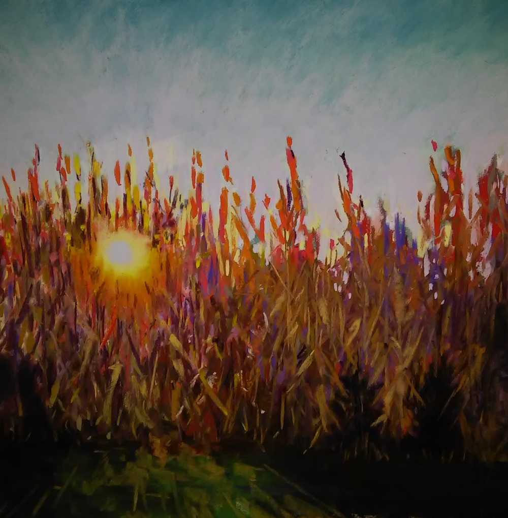 Fall Harvest  soft pastel on UART paper 16x16   SOLD