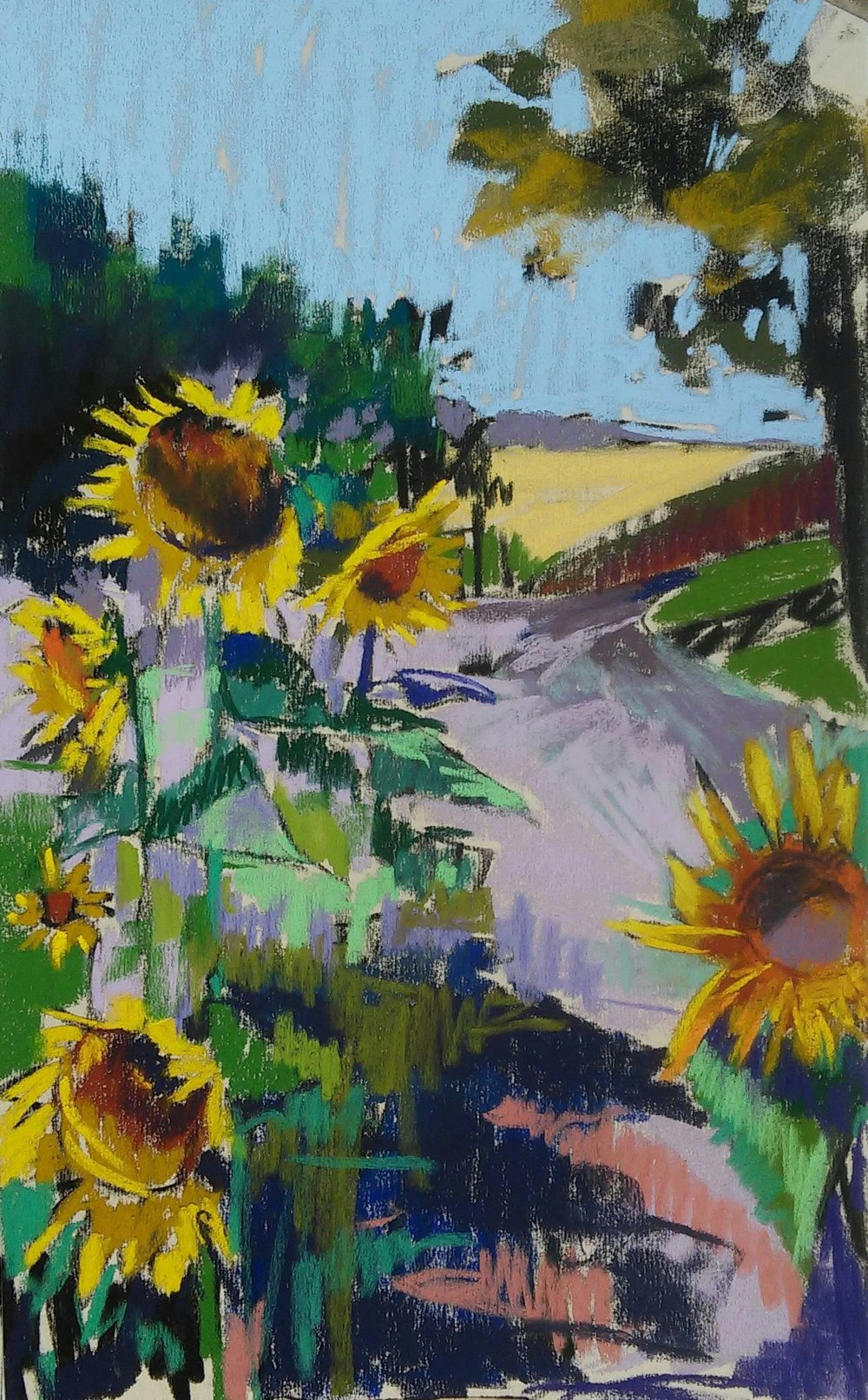 12x21 Sunflower Study Plein Air AVAILABLE