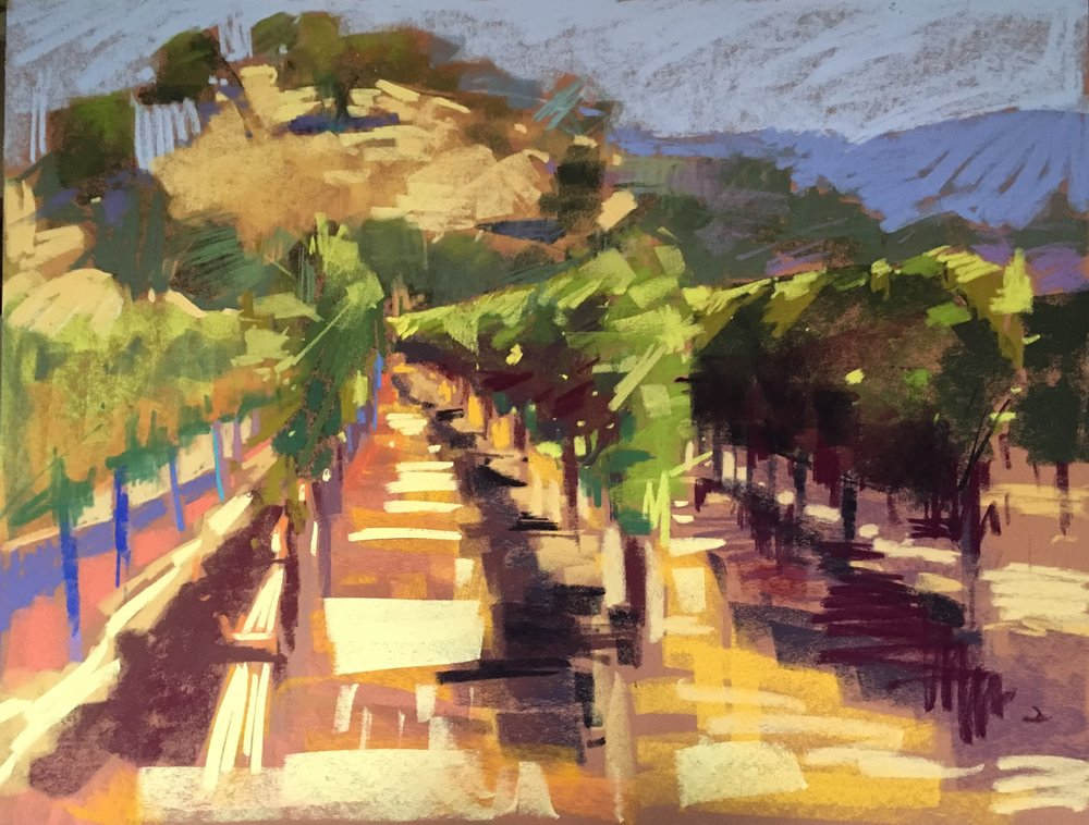 Sonoma Vineyard, SOLD