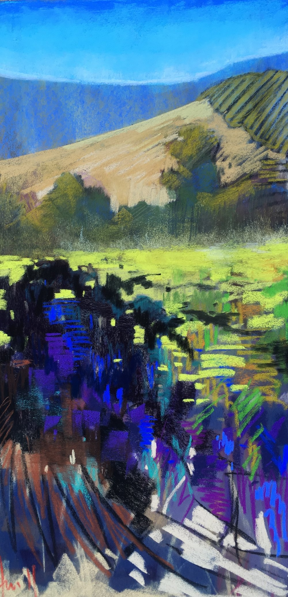 """Morning Shade"" 12x24 Sonoma Plein Air SOLD"