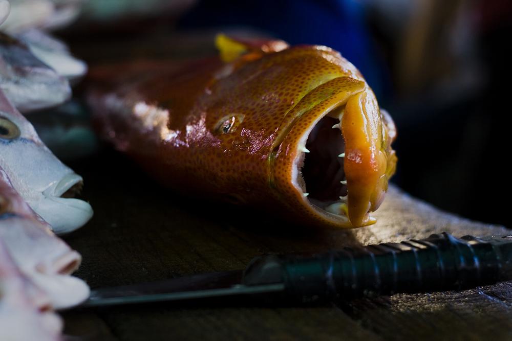 mercado pescado.jpg