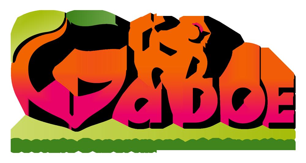 2015 GaDOE Logo.png