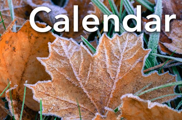 Calendar_frost on leaves.jpg