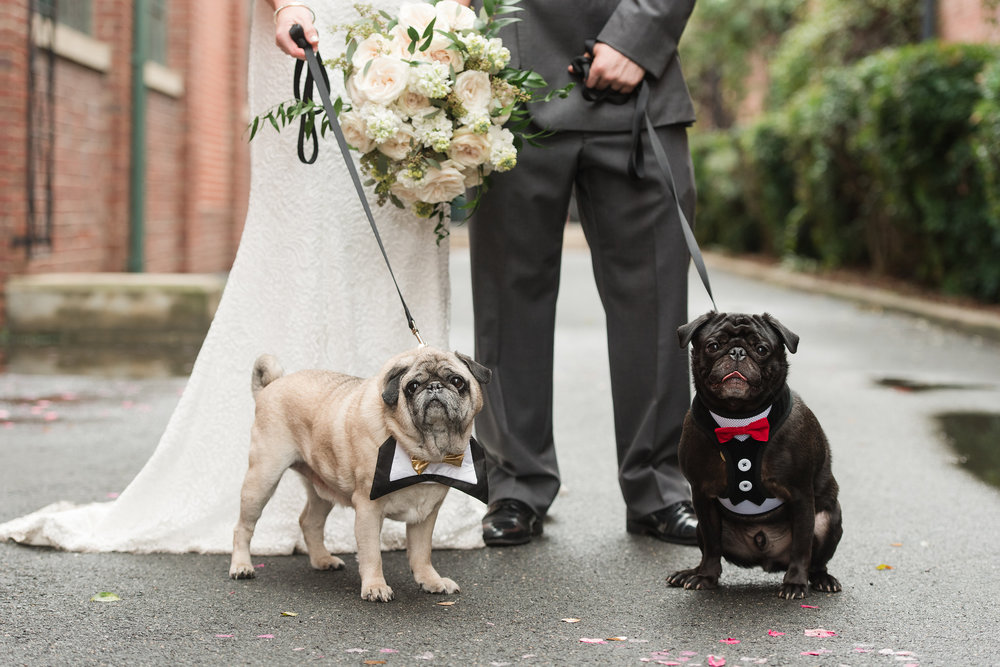 byrons-south-end-wedding-85.jpg
