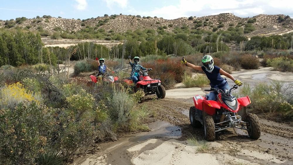 4 Wheeler Quad ATVs