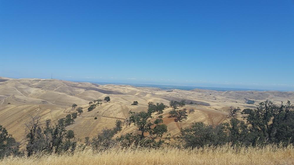 Bay Area / Carnegie - San Francisco / San Jose