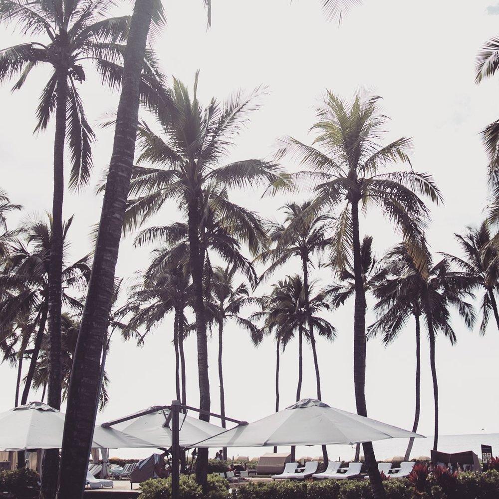 AC-Blog-Maui-1701005.jpg