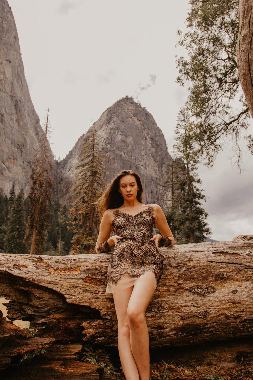 ACC-Yosemite-WebSize-1810084.jpg