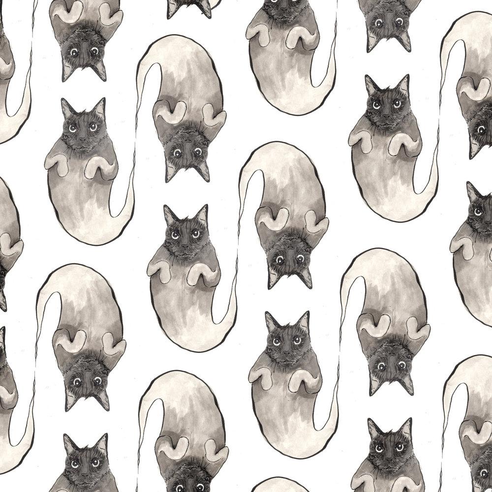 ghostcat.jpg