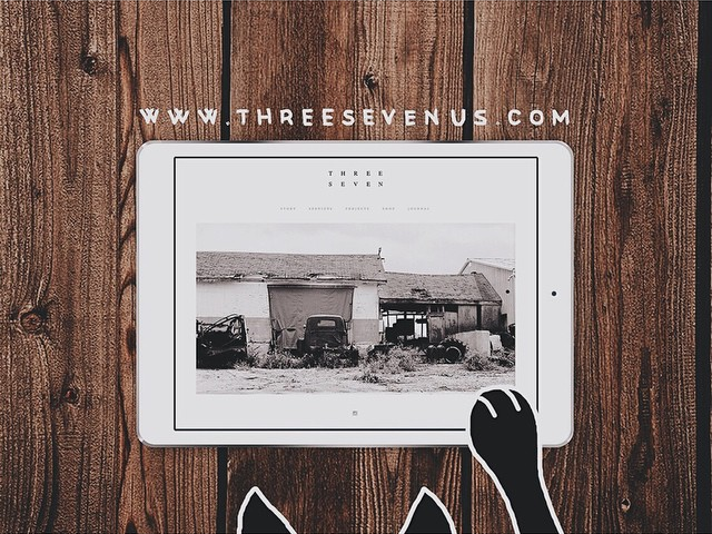 Just launched a new website for @threesevenus - beautiful furniture, interior design and more at threesevenus.com. Even your cat will like it.