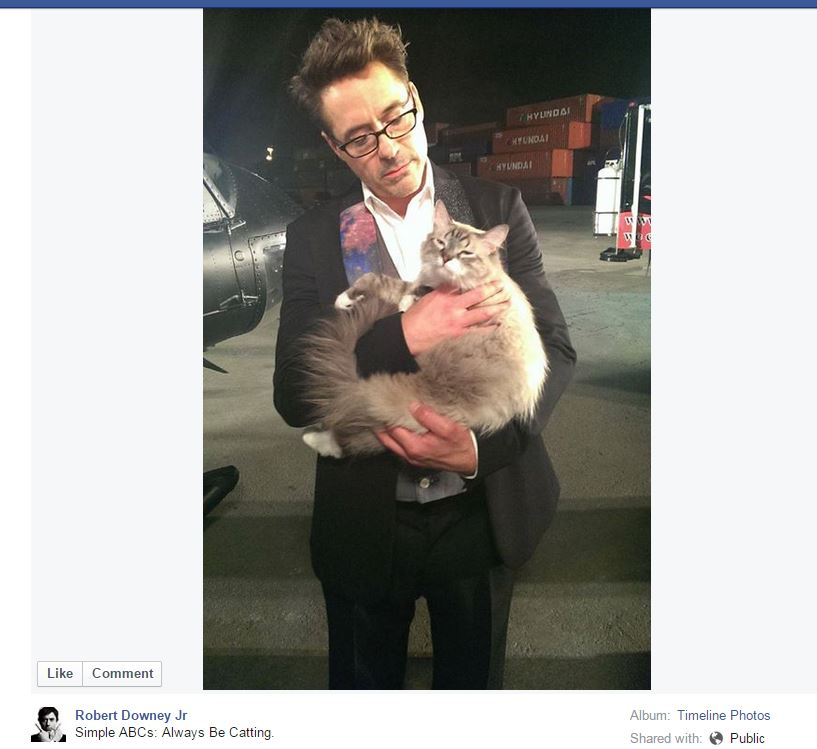 RDJ-catting