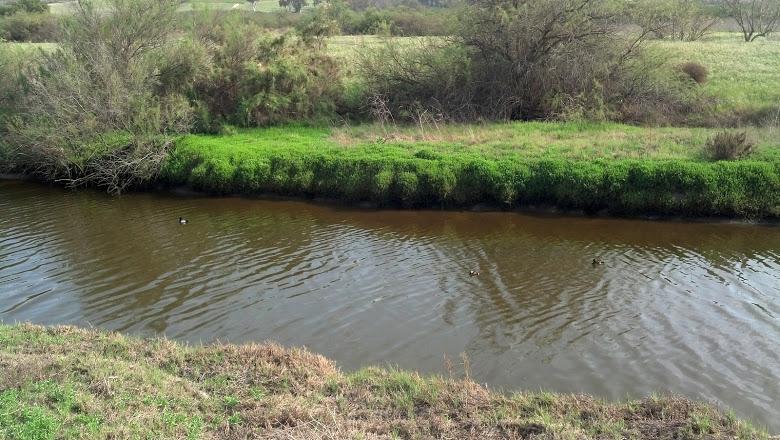 riverpic2.jpg