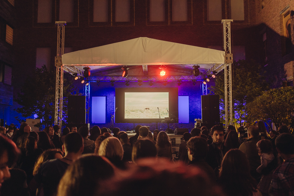 My project »The Buffalo that could not dream«  is shown during the Award Ceremony in Tbilisi, Georgia.