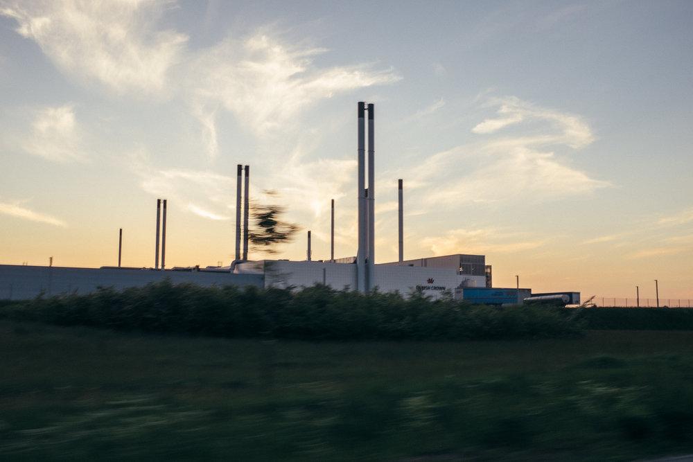 Danish Crown processing plant in Horsens, DK.