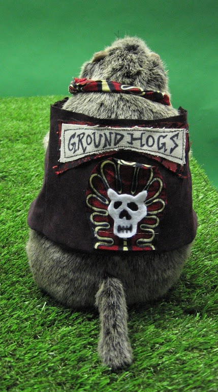 groundhog warrior back.jpg
