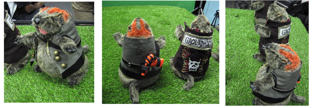 orange groundhog.jpg