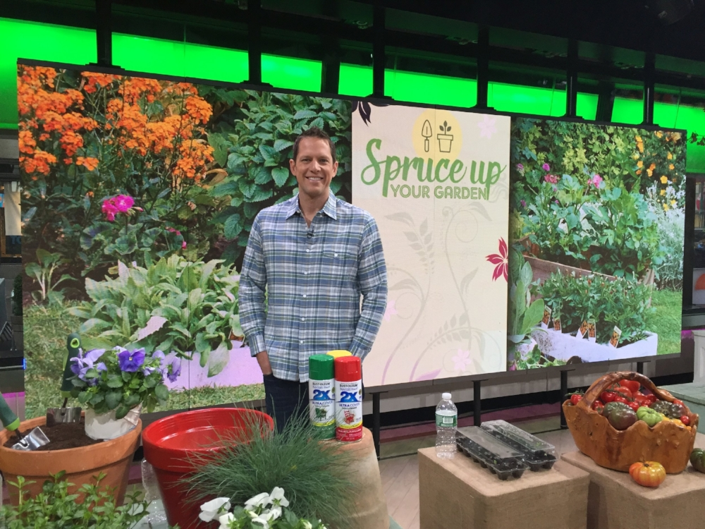 My April 4 Today Show Segment