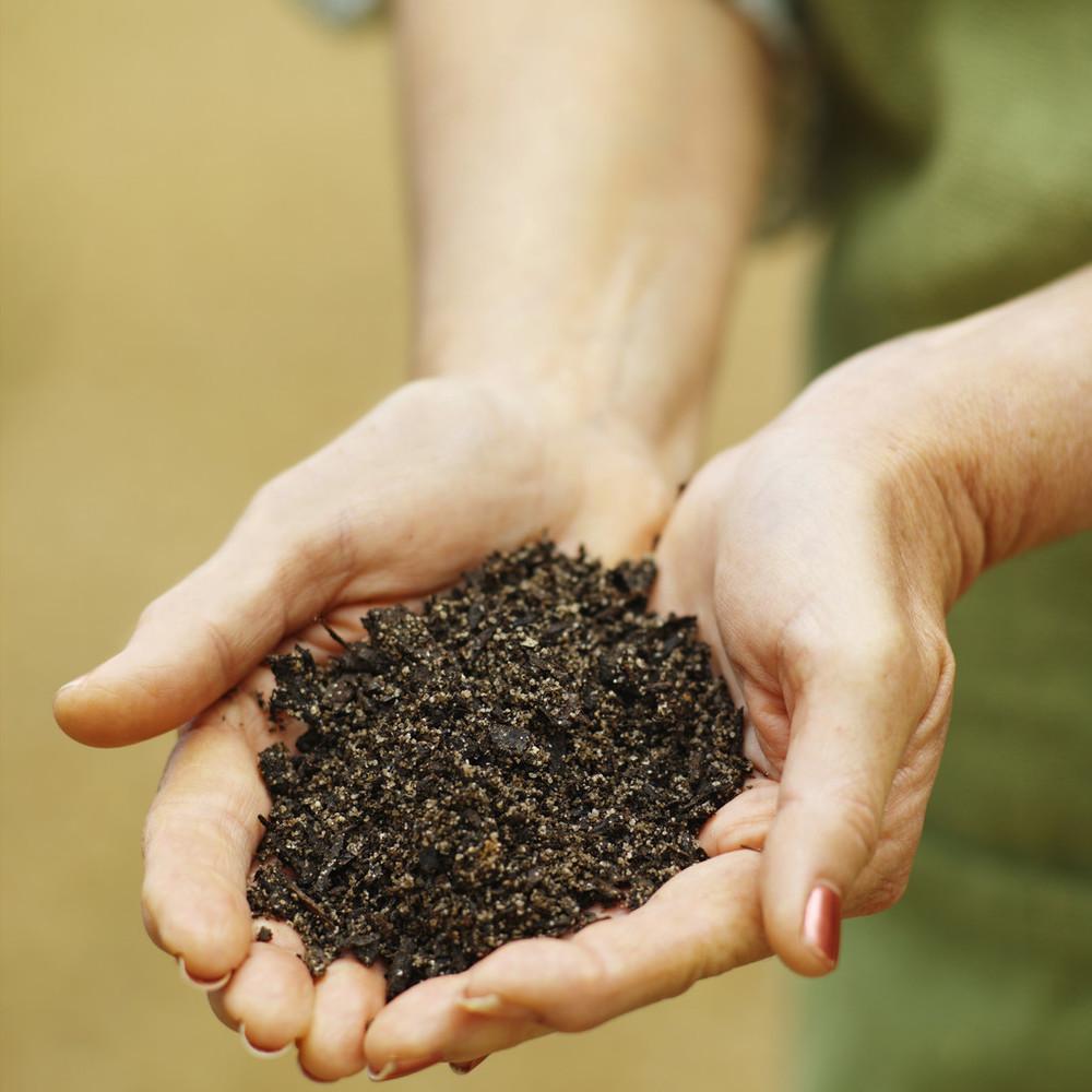 compost-hands.jpg