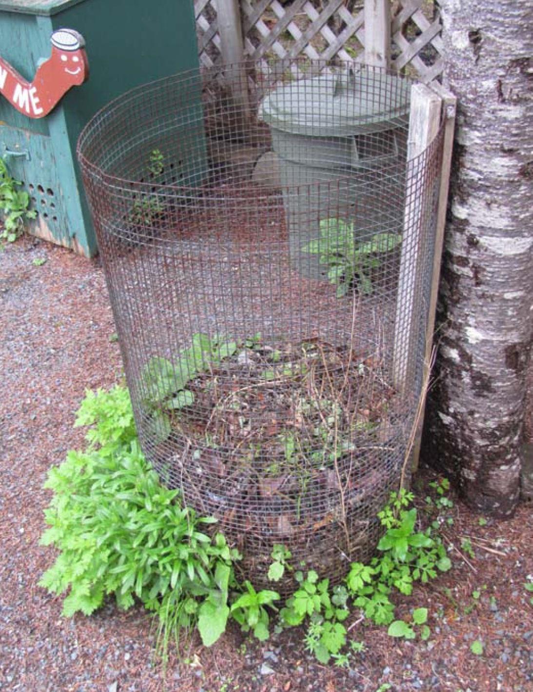 backyard compost bin patterns u0026 choosing a bin u2014 food first nl