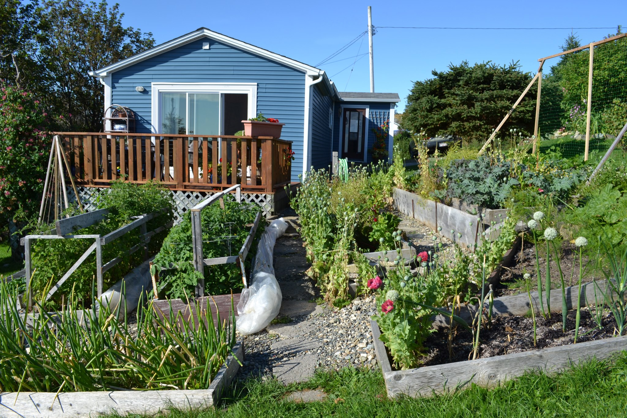 Workshop participants will tour this home raised bed garden as well as another nearby home garden and Community Garden.