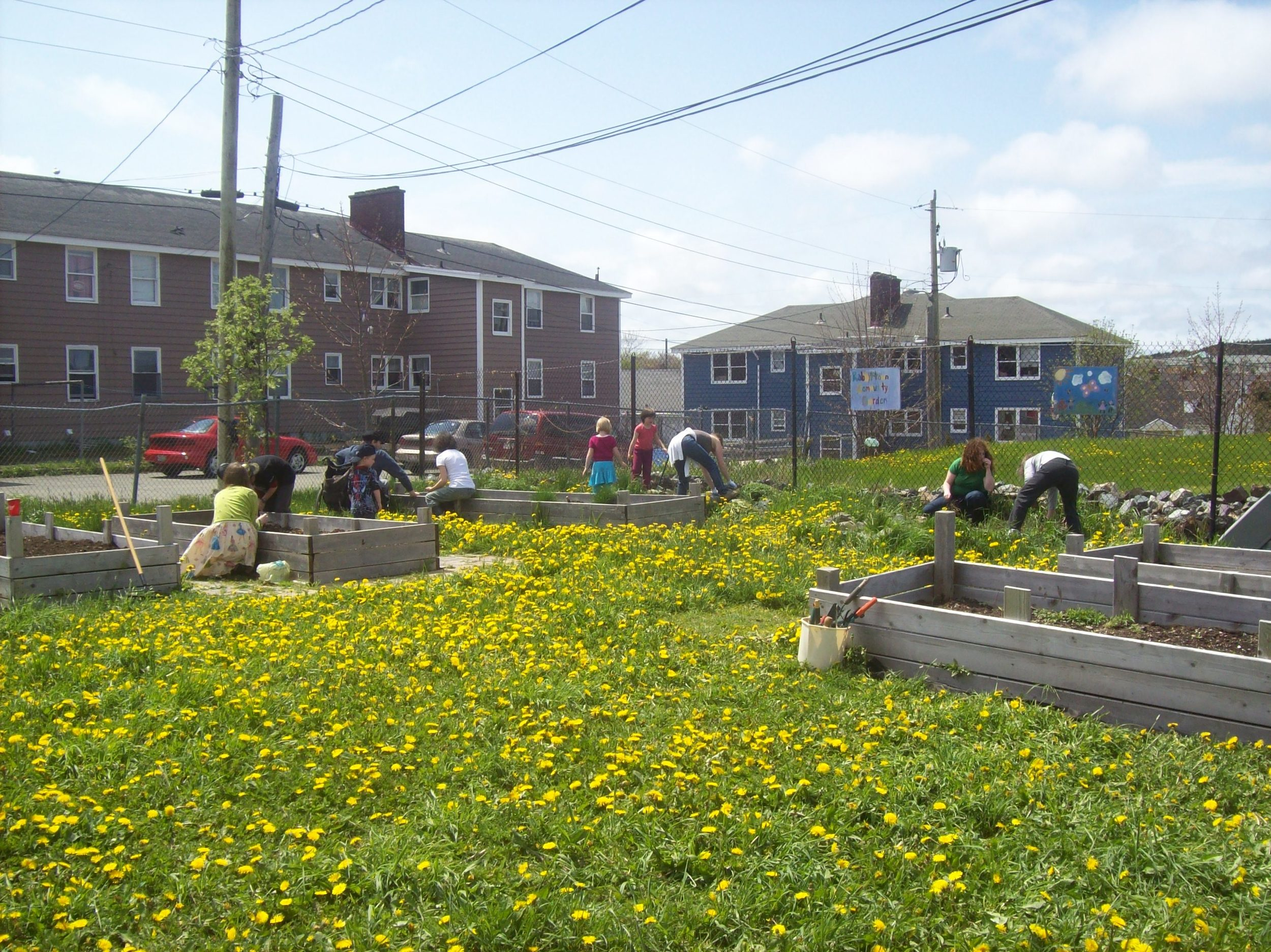 Rabbittown Community Garden