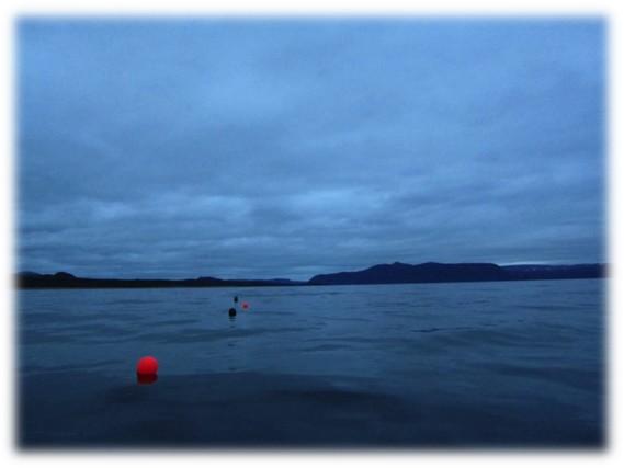 Lobster buoys, near Baker's Brook, Newfoundland