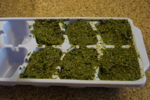 Pesto about to be frozen in an ice cube tray. Perfect for adding to sauces later.