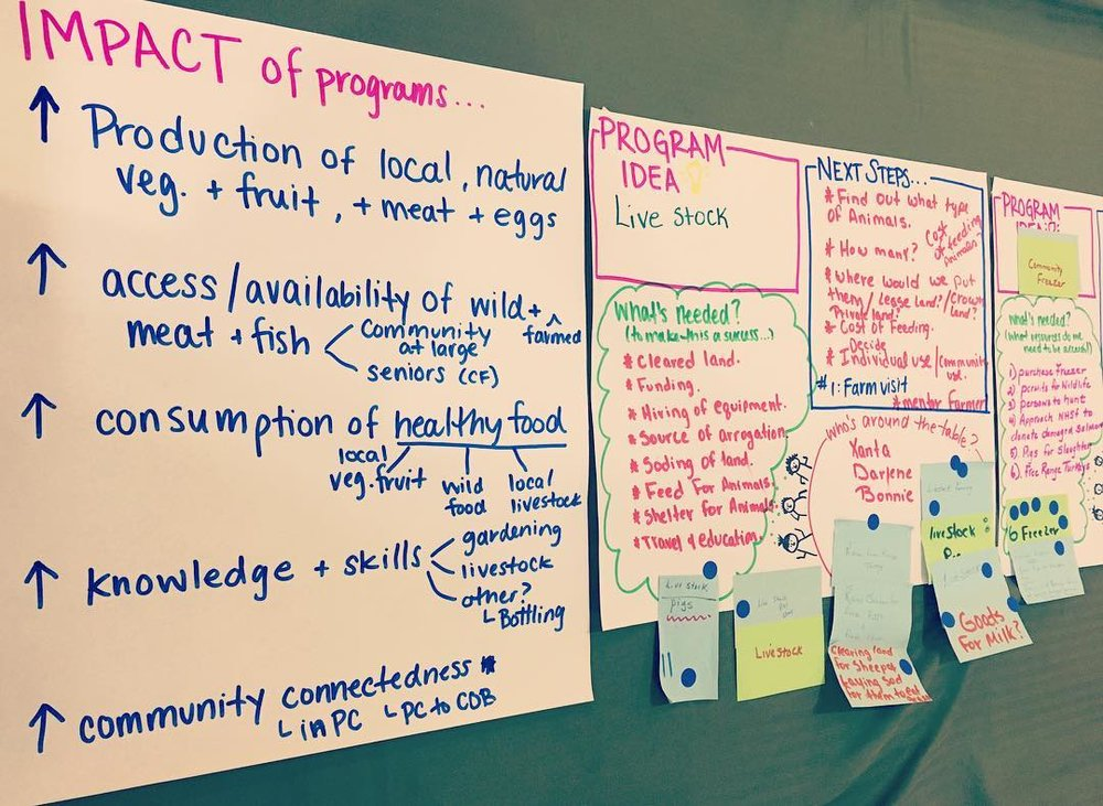 Pool's Cove Action Planning Notes.jpg