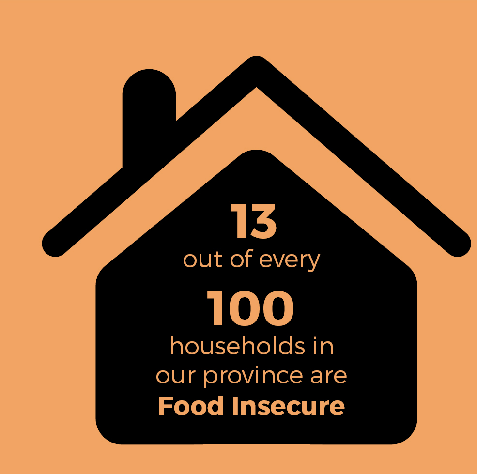 13.4% of households in our province are food insecure, meaning they have insecure access to adequate food because of financial constraints.
