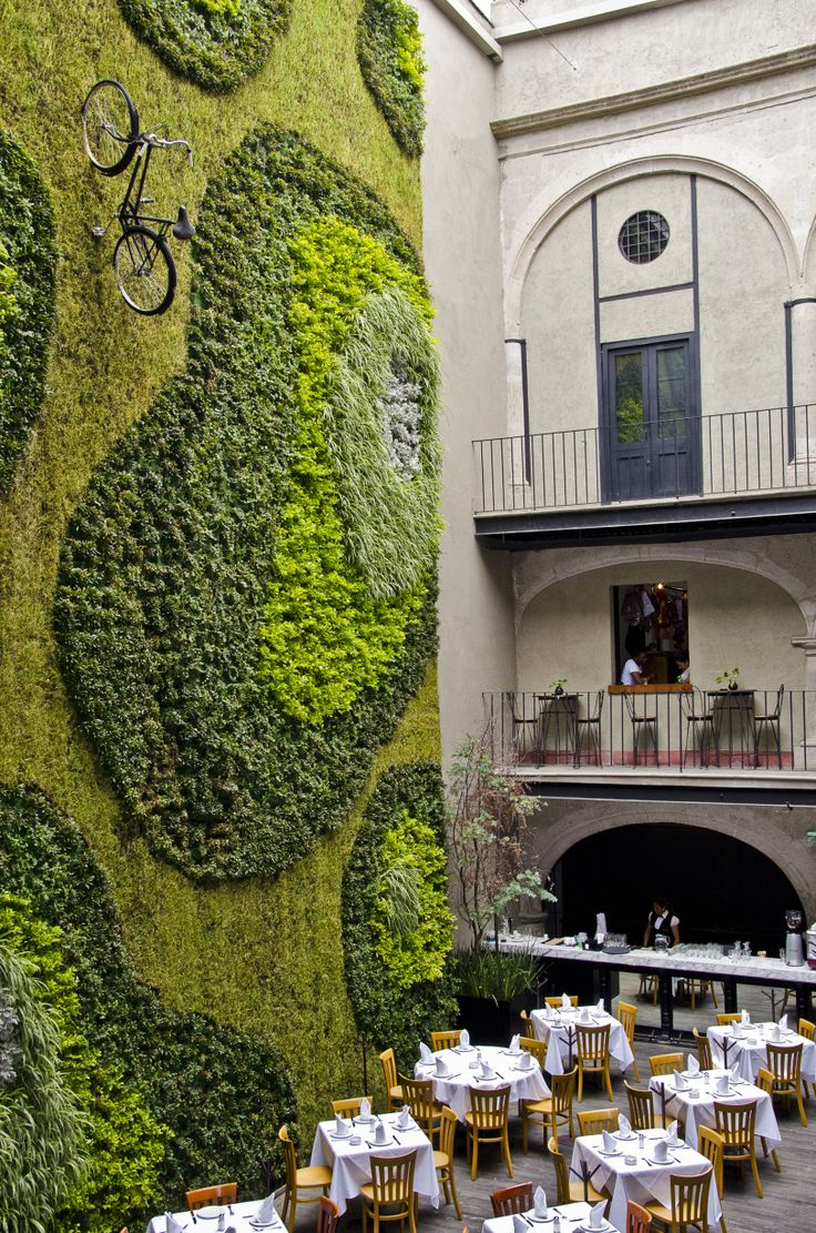 Lush vertical garden, bike included, at Restaurant Padrinos in Mexico City, Mexico