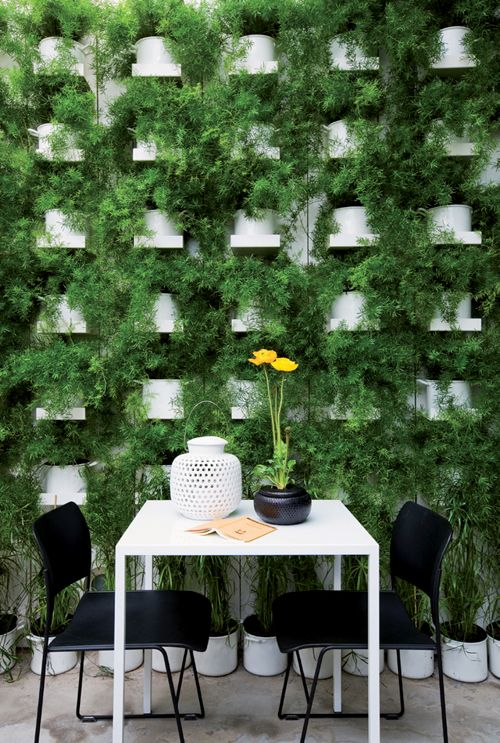 Furry fern living plant wall at Home-Made Delicate Restaurant in Milan, Italy