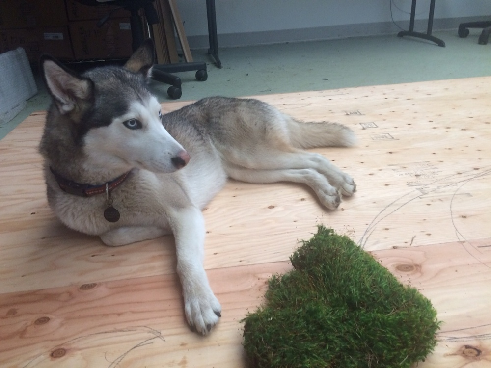 A behind-the-scene photo of Planted Design's moss manager working hard (or hardly working?) on the project.